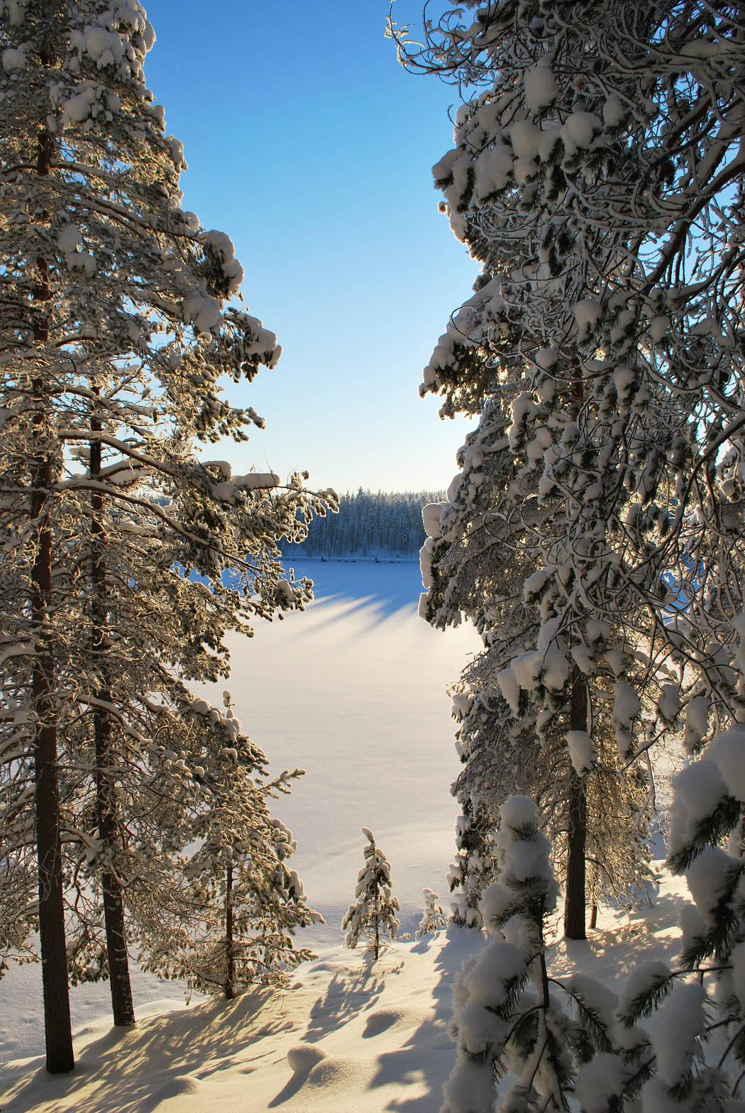 Hossa Öllöri talvi Sirke Seppänen Metsähallitus