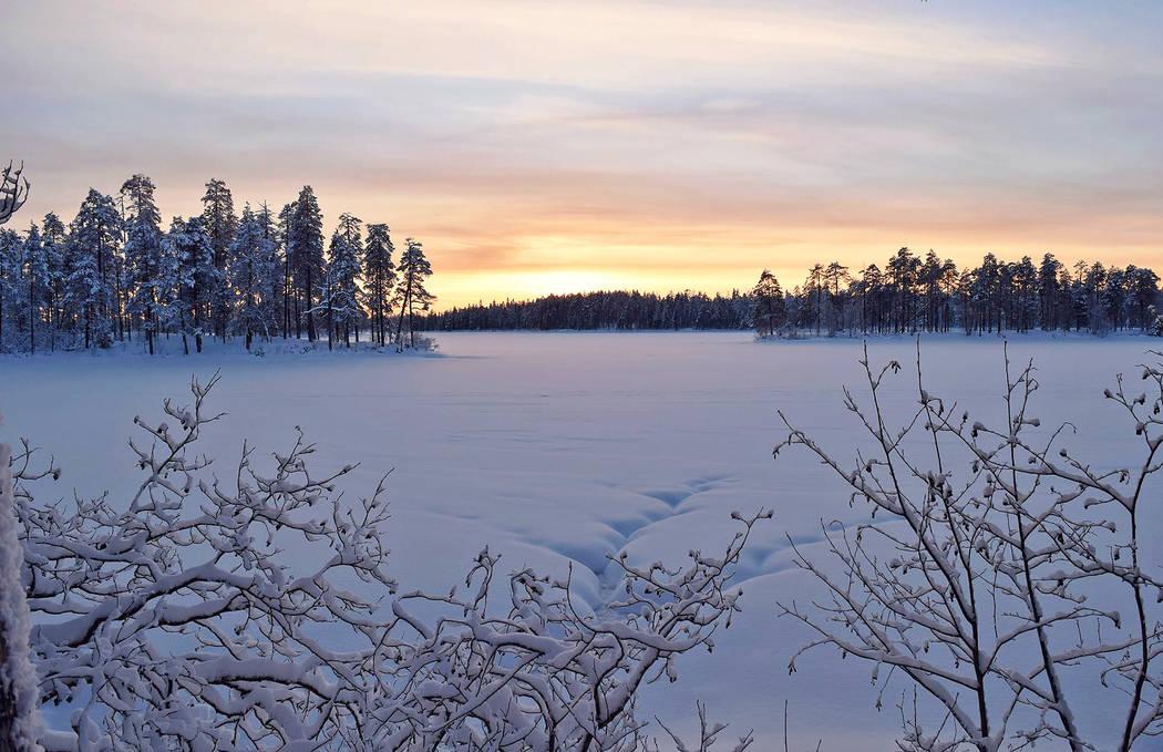 Hossa talvi Sirke Seppänen Metsähallitus